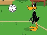 Daffy Volleyball