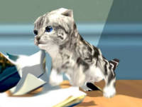 Cat Simulator: Kitty Craft