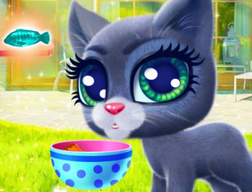 Cat Games Online