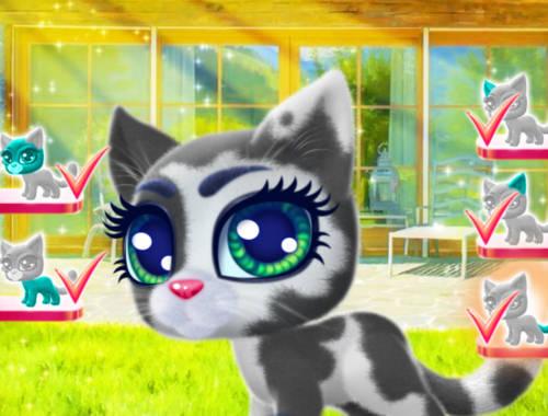 Mutlu Kedi Oyunu Online Ucretsiz Oyna Kraloyun