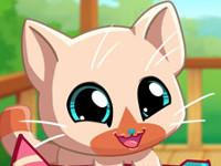 Paket Hayvanciklar Sevimli Kedi Oyunu Online Ucretsiz Oyna