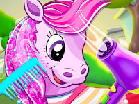 Pony Pet Salonu