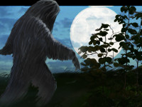 Das Bigfoot- Mysterium